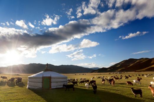 Tour Exchange Announcement: Mongolia – Malta